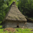 Traditional Transylvanian house — Stock Photo #7086865