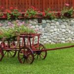 Nice garden — Stock Photo #7086912