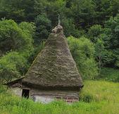 Casa tradicional da transilvânia — Fotografia Stock