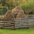 Stock Photo: Hayricks