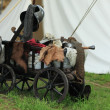 Battle cart — Stock Photo