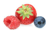 Three berry fruits — Stock Photo