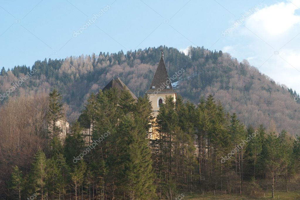 The church of hollenstein whih is located in lower austria — Stock Photo #6996380