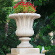 Ornamental stone flowerpot — Stock Photo
