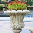 Ornamental  stone flowerpot - Stock Photo