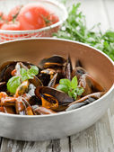 Mussel with tomato sauce and basil over casserole — Stock Photo