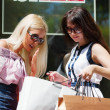Two young women with shopping bags - Lizenzfreies Foto