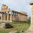 Paestum — Stock Photo #7530883