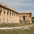 Paestum — Stock Photo #7530905