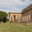 Paestum — Stock Photo #7530913
