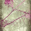 Grunge Pink and White Blossom Branch — Stock Photo