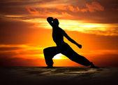 Fitness artes marciais ao pôr do sol — Foto Stock