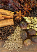Mixed Spices on a Wood Background — Stock Photo