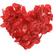A heart of rose petals — Foto Stock