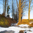 Early spring in small village in Germany, Europe . — Stock Photo