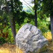 Single rock in mountain of  Crimea - Stock Photo