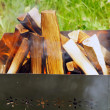Firewoods in barbecue (grill) - Stock Photo