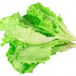 Leaf of lettuce on white background. Isolated - Foto de Stock