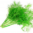 Bunch of dill on white background. Isolated - Photo