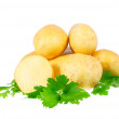 Young potatoes, decorating of parsley . Isolated - Stock Photo