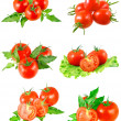Collection of ltomatoes with green branch.Isolated — Stock Photo