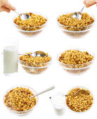 Collection,set of glass bowl of flakes.Isolated — Stock Photo