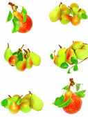 Collection of pears and green leaf. Isolated — Stock Photo