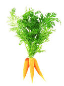 Fresh carrot with green branch . Isolated. — Stock Photo