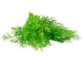 Bunch of dill on white background. Isolated — Stock Photo