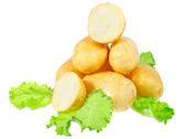 年轻的土豆、 生菜的装饰。隔离 — 图库照片