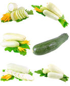Vegetable marrow with green foliage. Isolated — Stock Photo