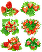 Collection of strawberries on white. Isolated — Stock Photo