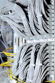 Telecommunication E1 line in a datacenter. — Stock Photo