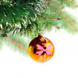 Christmas decoration-glass ball on fir branches. — Stock Photo #7604056