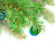 Christmas decoration-glass ball on fir branches. — Stock Photo #7604071