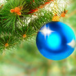 Christmas decoration-glass ball on fir branches. - Stock Photo