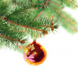 Christmas decoration-glass ball on fir branches. — Stock Photo #7624987