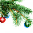 Christmas decoration-glass ball on fir branches. — Foto Stock