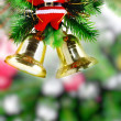 Christmas and New Year tree. Isolated — Stock Photo