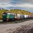 Freight diesel train — Stock Photo #7299636