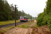 Railbus passing the forest — Stock Photo