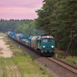 Freight diesel train — Stock Photo #7302441