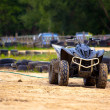 Stock Photo: Buggy excursion