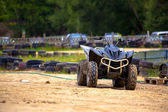 Buggy excursion — Stockfoto