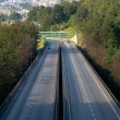 Motorway — Stock Photo #7324643
