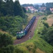 Freight diesel train - Stock Photo