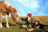 Boy, horse and dogs — Stock Photo