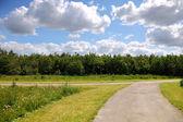 Park Bike Path — Stock Photo