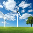 Ecology - Wind of change — Stock Photo