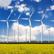 Wind turbines. Alternative energy source. — Stock Photo